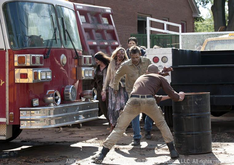 Öpmeye geliyorlar Shane :)