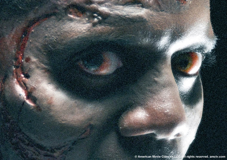 Mr Zombie says Watch the Walking Dead